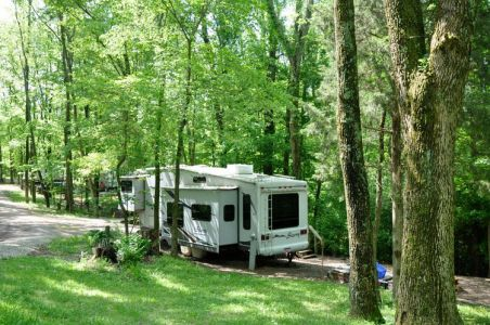 Pine Cove Camping Site